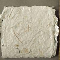 9 handgeschöpfte, quadratische Kärtchen mit eingeschöpften Pflanzenfasern, ca. 10,5 cm x 10,5 cm Bild 5