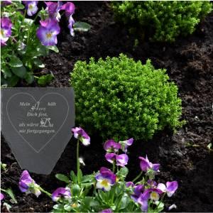 Gedenktafel Grabstein Grabschmuck Grab Schieferplatte mit Trauerspruch Grabplatte Mein Herz...für einen geliebten Mensch Bild 4