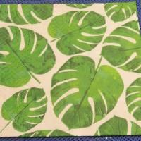 5 Servietten / Motivservietten  grüne Blätter / Grünpflanzen / Monstera  / Leaves  B298 Bild 1