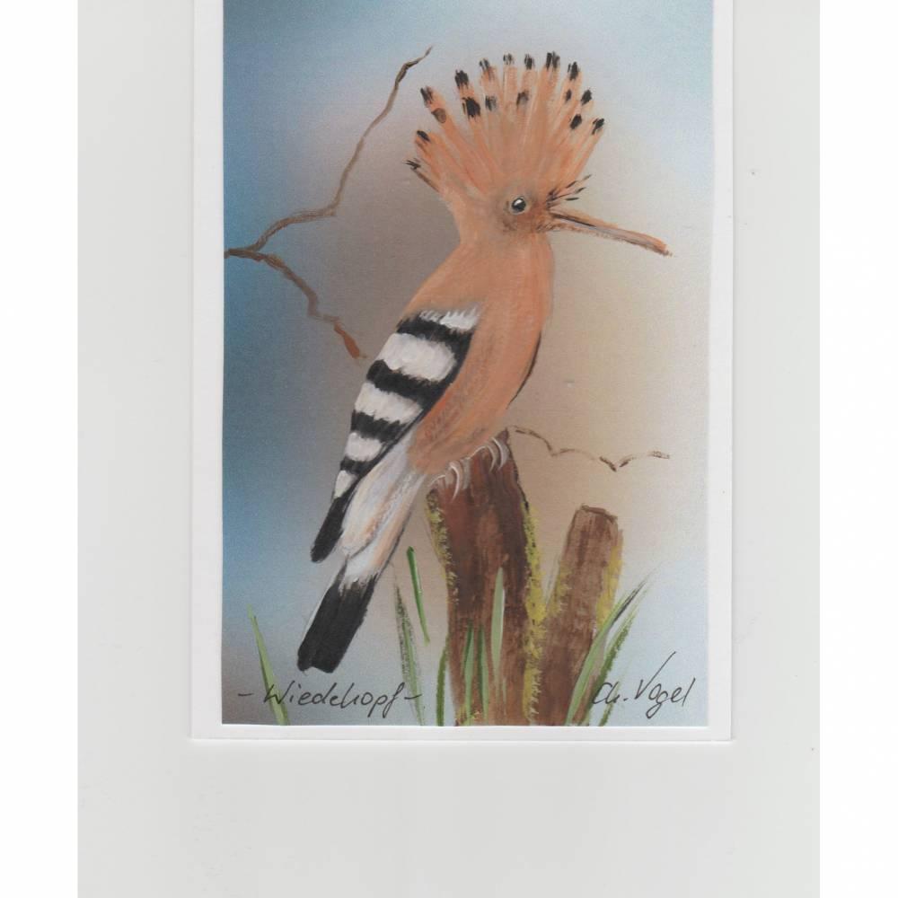 Vogelbild / Sammelkarte-   Wiedehopf-    handgemalt Bild 1