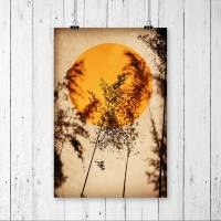 Illustration Sonne in Rostorange, Vögel, Vogelschwarm, Stare auf erdigem Beige, Trendfarbe, moderner Kunstdruck Bild 1