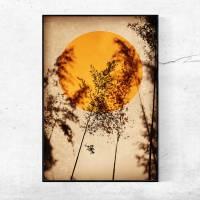 Illustration Sonne in Rostorange, Vögel, Vogelschwarm, Stare auf erdigem Beige, Trendfarbe, moderner Kunstdruck Bild 2