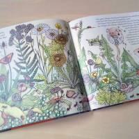 """Bilderbuch """"Wie das Eichhörnchen seinen Glücksstern fand"""", eine Botschaft für Kinder und Erwachsene Bild 2"""
