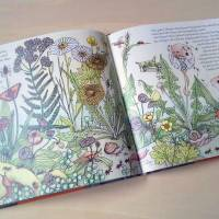 """Wo das Glück zu finden ist: Kinderbuch """"Wie das Eichhörnchen seinen Glücksstern fand"""", für Kinder und Erwachsene Bild 2"""