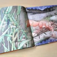 """Bilderbuch """"Wie das Eichhörnchen seinen Glücksstern fand"""", eine Botschaft für Kinder und Erwachsene Bild 7"""