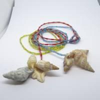 Lange bunte Halskette mit Miniperlen und echten Muscheln zum Knoten, maritimer Look für Naturliebhaberinnen Bild 5