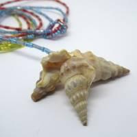 Lange bunte Halskette mit Miniperlen und echten Muscheln zum Knoten, maritimer Look für Naturliebhaberinnen Bild 8