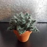 Kaktus/Sukkulente im Tontopf - gehäkelt - Dekoration Bild 4