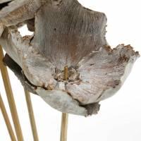2 Stk. Holzblumen Palm Cup weiß gewaschen, Länge ca. 40 cm Bild 2
