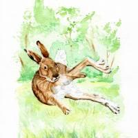 Endlich Frühling, Feldhase, Rabbit,  Aquarell, 20 x 30 cm, A4, Tier Portrait, hangemalt, Unikat Bild 1