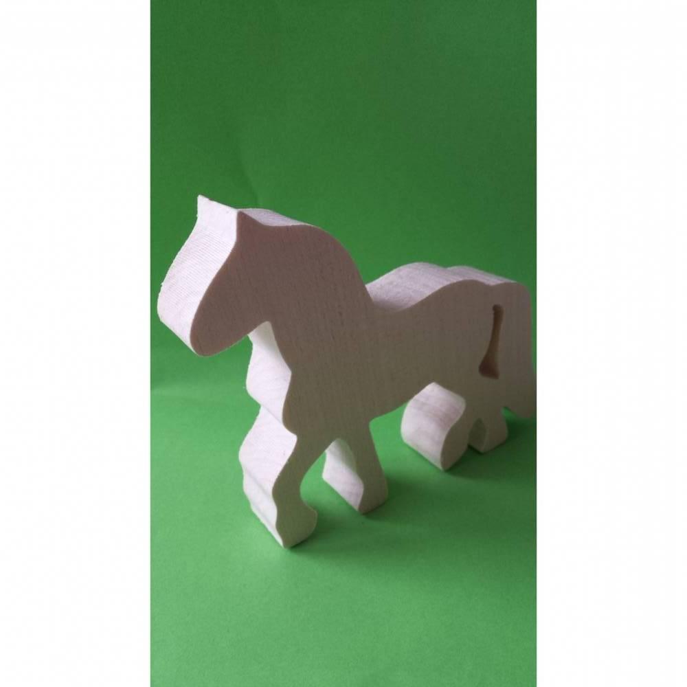 Pferd Bild 1