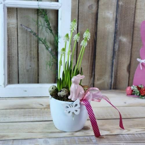 Pflanzschale Frühling frisch, Tischdeko frisch, Frühlingsdeko mit rosa Hase, Ostern