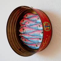 Ölsardinenfrosch, Frosch, Bild, Konservendose, Fischdose, Sardinen, Fische Bild, Frosch Bild, Froschbild, alte Blechdose, Froschkönig Bild 2