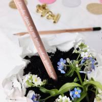 Bleistift zum Einpflanzen, Geschenk für Erzieherin oder Tagesmutter  Bild 2
