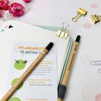 Bleistift zum Einpflanzen, Geschenk für Erzieherin oder Tagesmutter  Bild 5