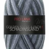 Pro Lana 4 fach Sockenwolle Schauinsland Bild 3