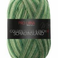 Pro Lana 4 fach Sockenwolle Schauinsland Bild 5