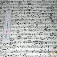 19,00 EUR/m Meterware Timeless Treasures Musik Noten US-Designerstoff Behelfsmasken Kissen Decken Taschen Accessoires Bild 2