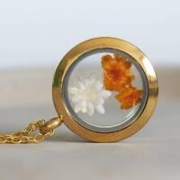 Trockenblumen Medaillon Halskette, 25 mm, getrocknete echte Blüten, Brautschmuck, gold, rosegold, silber Bild 2