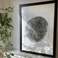 Holzdruck Jahresringe Baumscheibe Linoldruck Kunstdruck Poster Bild 2