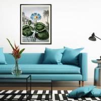 Blaue Wasserlilie Illustration Blumenbild 1804 Vintage Shabby Boho -  Kunstdruck Fineart - Wanddekoration Bild 2