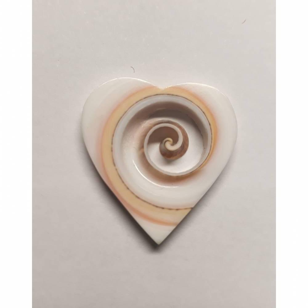 Ein Herz aus dem Meer!  Wunderschöne Herz-Perle aus einer Meeresschnecke geschnitten. 100% Natur Bild 1