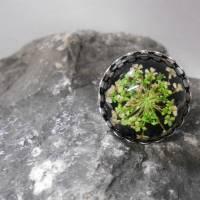 Klee Resin  versilbert Ring  rund kuppel Bild 1
