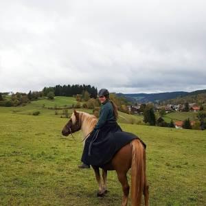 Reitrock dunkelblau Wolle, Wickelrock nachtblau, Pferd und Reiter Herbst, reiten im Winter, langer Rock Fotoshooting Bild 8