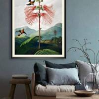 Große Mimose Illustration Blumenbild 1799 Vintage Shabby Boho - Kunstdruck Fineart - Wanddekoration Bild 1