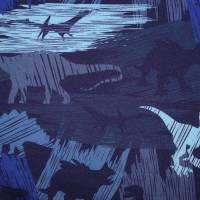 16,50 Euro/m  Softshell Fiete mit Dinosaurier , blau-bunt Bild 1