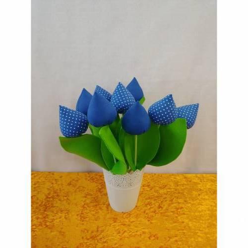 Tulpen Blau oder Blau mit Weißen Punkten