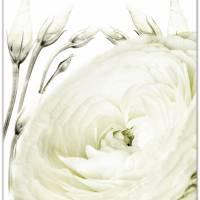 *Home* 3er Set in Grün Handlettering Print Poster Kunstdruck Bild mit Spruch Zitat Frühlingsblumen Bild 3