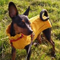Hundepullover mit Zopfmuster, extra dick Bild 1