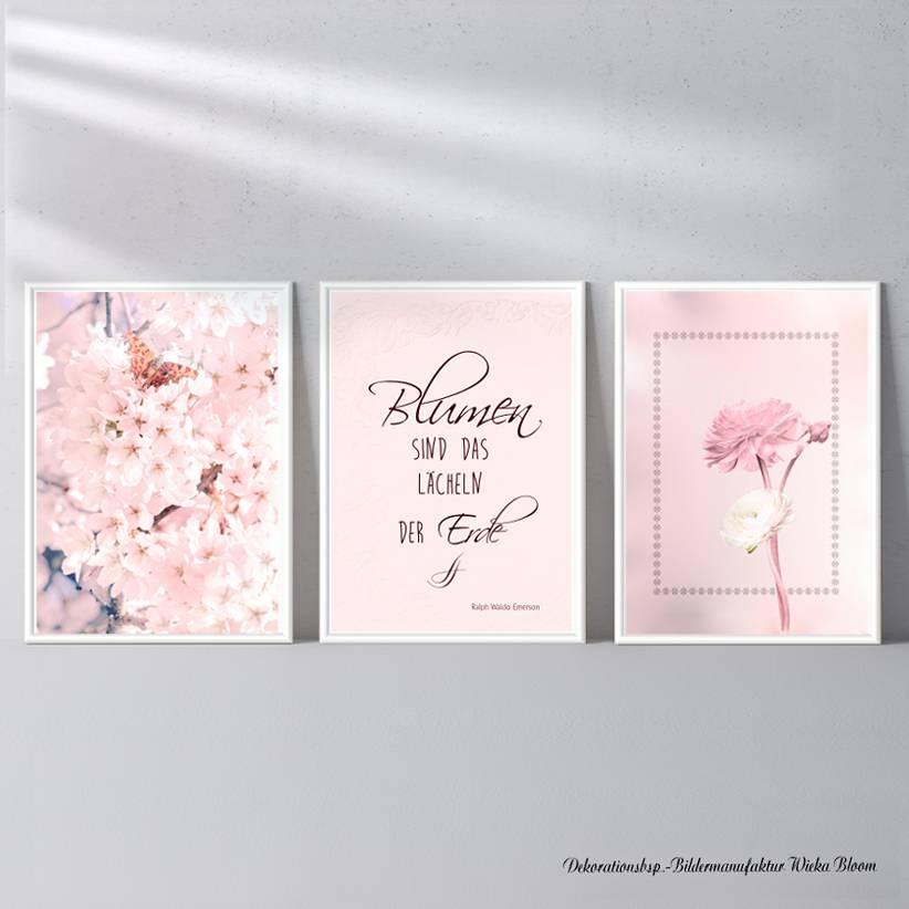 BLUMEN SIND DAS LÄCHELN... 3er Set in Rosè Handlettering Print Poster Kunstdruck Bild mit Spruch Zitat Frühlingsblumen Bild 1