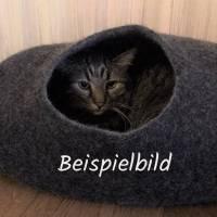 Katzenhöhle Bild 4