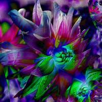 Blütenimpressionen strukturiert - Digital-ART - Kunstwerk 1/10 Bild 1