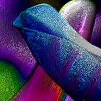 Blütenimpressionen strukturiert - Digital-ART - Kunstwerk 1/10 – Design  Ulrike Kröll Bild 2