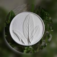 Duftstein Aromastein Duftpender Duftanhänger DUFTTALER Natur Pflanzen Salbei Bild 2