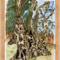 2000-jähriger Olivenbaum in Pedras d'el Rei (Portugal) - Original Aquarellmalerei, gerahmt Bild 1