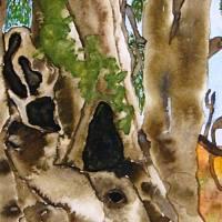 2000-jähriger Olivenbaum in Pedras d'el Rei (Portugal) - Original Aquarellmalerei, gerahmt Bild 4