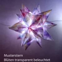 Origami Bastelset Bascetta 10 Sterne transparent bunte Blüten 5,0 cm x 5,0 cm Bild 1