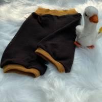 Knielange Shorts aus 100% Wolle (Merinowolle) dunkelbraun mit goldmelierten Wollbündchen / Gr. 74 Bild 2