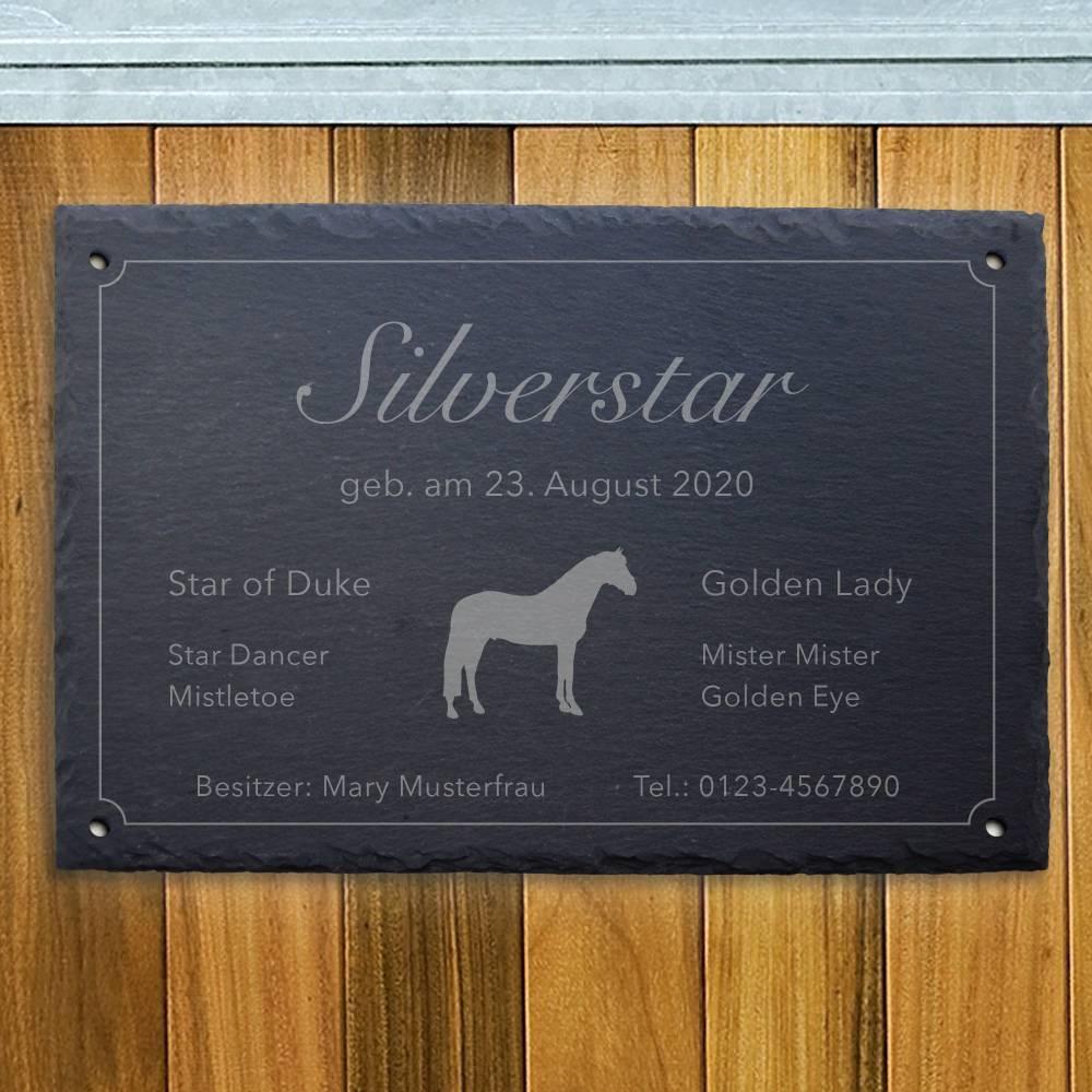 """Stallschild auf Schiefer (30x20cm) mit Gravur-Motiv """"Silverstar"""" Tierschild Namensschild Boxenschild Pferd Pony  Bild 1"""