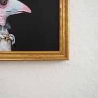 Der Geierfrosch, Froschbild, witziges Bild, Geierbild, Raubvogel, Vogelbild, Froschkönig Bild 4