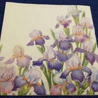 5 Servietten / Motivservietten / Iris  Blumen B 16 Bild 1