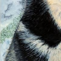 Husky - Original Aquarellmalerei, gerahmtes Unikat Bild 4