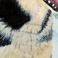 Husky - Original Aquarellmalerei, gerahmtes Unikat Bild 5
