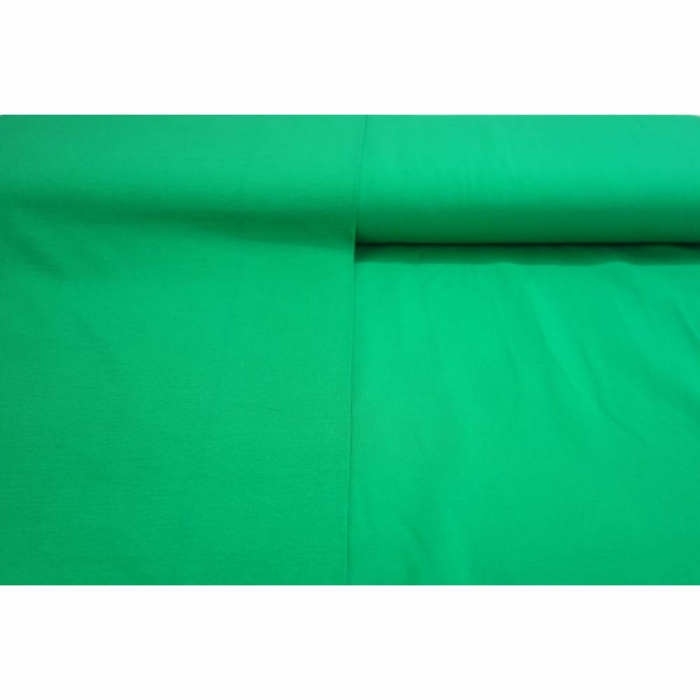 Jersey uni blattgrün GOTS 10 cm Bild 1