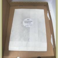 Bastelzubehör, Löwenzahnsamen, Pusteblumen Samen getrocknet Schirmfliegersamen, zum Basteln und Dekorieren Bild 3