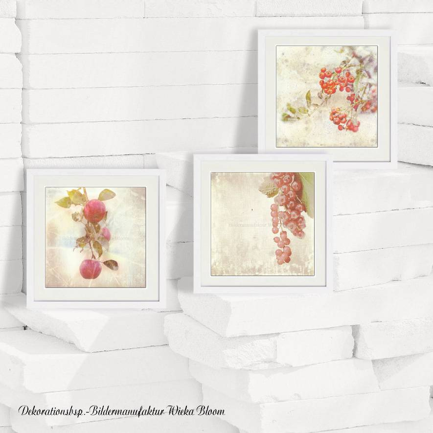 3er Set ROTE FRÜCHTE Bild auf Leinwand Holz Kunstdruck Print Äpfel Johannisbeeren Landhausstil VintageStyle ShabbyChic  Bild 1
